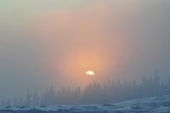 366855_pejzazh_priroda_zakat_solnce_nebo_tuman_zima_sneg__1680x1050_www.GdeFon.ru_