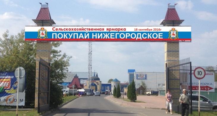shapka1