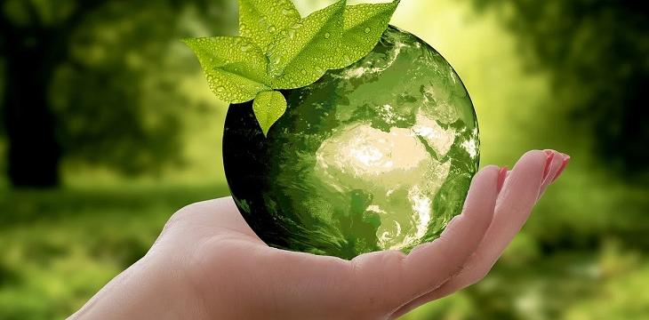 В Сарове увеличился расход в сфере охраны окружающей среды